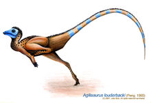 Agilisaurus louderbacki by sputatrix.jpg