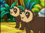 Bears, Spectacled (Go Diego Go)