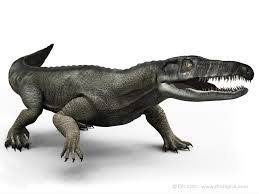 Chasmatosaurus