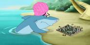 GOTJ Shark