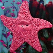 Peach the sea starrrrr