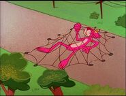 Pink panther trapped in the net 2