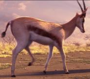 Animals United Springbok