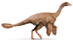 Ornithomimus.png