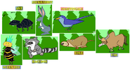 Stanleys-alphabet-adventure-forest-animals