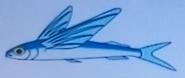 Batw-animal encyclopedia-flying-fish