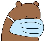 Grizzly Bear (Corona)