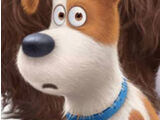 Max (The Secret Life of Pets)