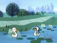 PPG Ducks