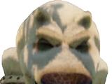 Polar Bear (Crash Bandicoot)