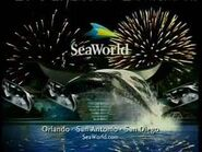 Sea world nightime
