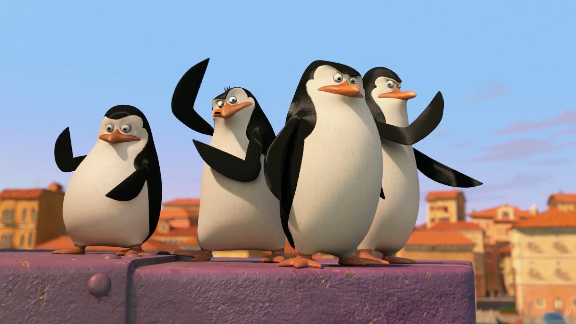 Skipper, Private, Kowalski, and Rico