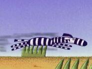 Zed Running