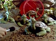 Creature Comforts Turtle