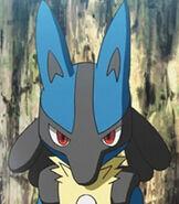 Lucario in Pokemon the Movie I Choose You!