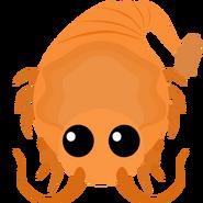 Mopeio Shrimp