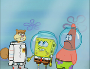 Spongebob and patrick tell sandy to sorry