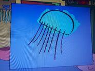 Stanley Barrel Jellyfish