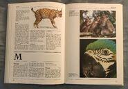 The Kingfisher Illustrated Encyclopedia of Animals (92)