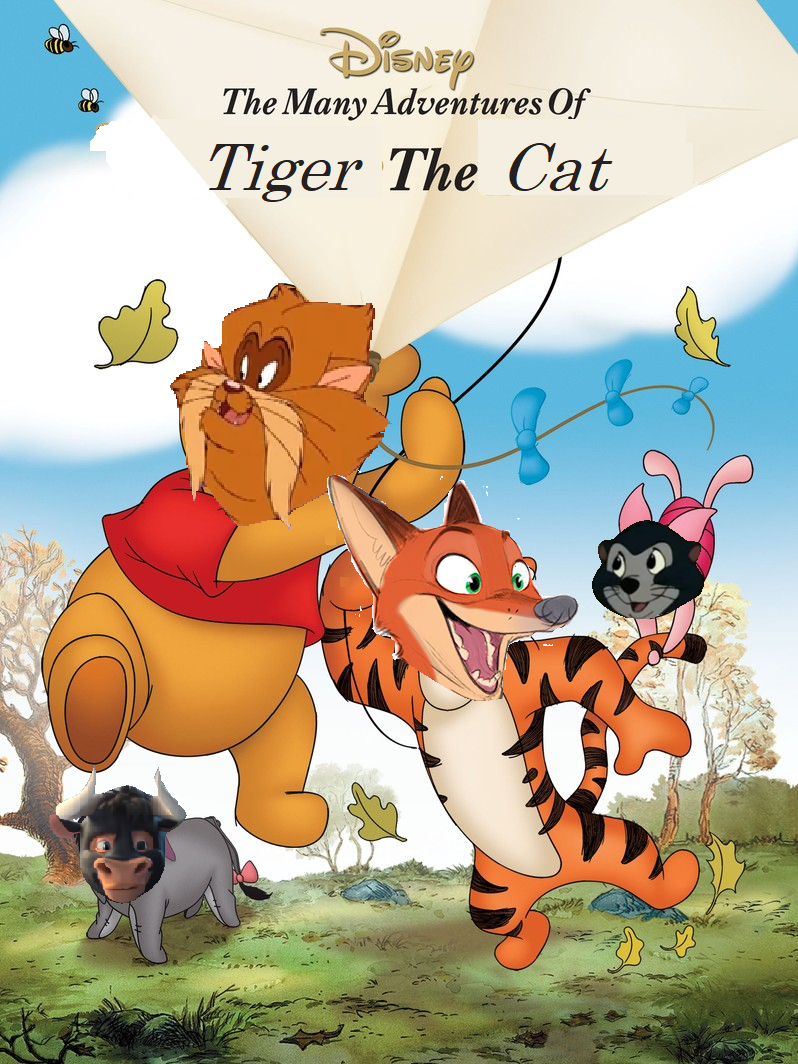 The Many Adventures of Tiger the Cat