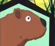 Yo-kai watch Capybara