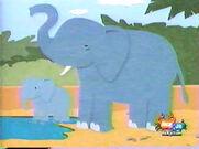 LB Elephants