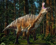 Lambeosaurus 2