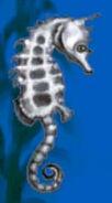Seahorse-jumpstart-preschool