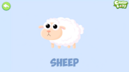 Candybots Sheep
