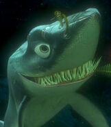 Chum in Finding Nemo