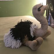 Oreo the Ostrich