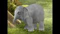 Wonder Pets Elephant