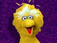 "Big Bird says ""Toodle-oo!"" in a purple static background"