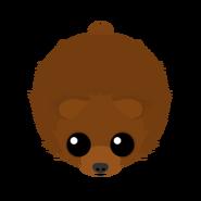 Mopeio Gobi Bear