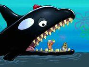 SBSP Orca