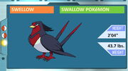 Topic of Swellow from John's Pokémon Lecture.jpg