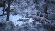 1200px-Dire wolf