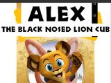 Alex the Black Nosed Lion Cub