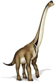 I1 Ultrasaurus LeCire s.jpg