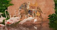 Life.of.Pi Flamingos