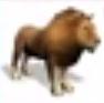 Lion-rct3