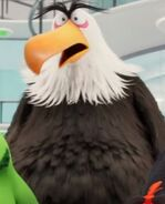 Mighty Eagle Surprised Face