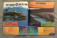 Predator Splashdown (7)