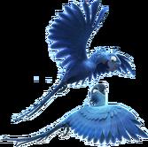 Blu and Jewel flying Render