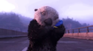 Finding Dory Otter
