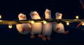 Penguins flying out circus