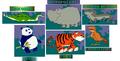 Stanleys-alphabet-adventure-jungle-animals