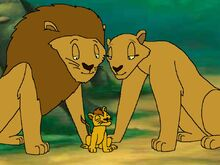 The lion family was happy to have returned their cub, who had been caught and sold to a circus.jpg