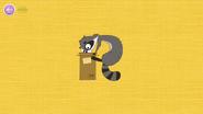 Alive Raccoon