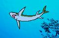 Great White Shark in Hokus Pokus Pink